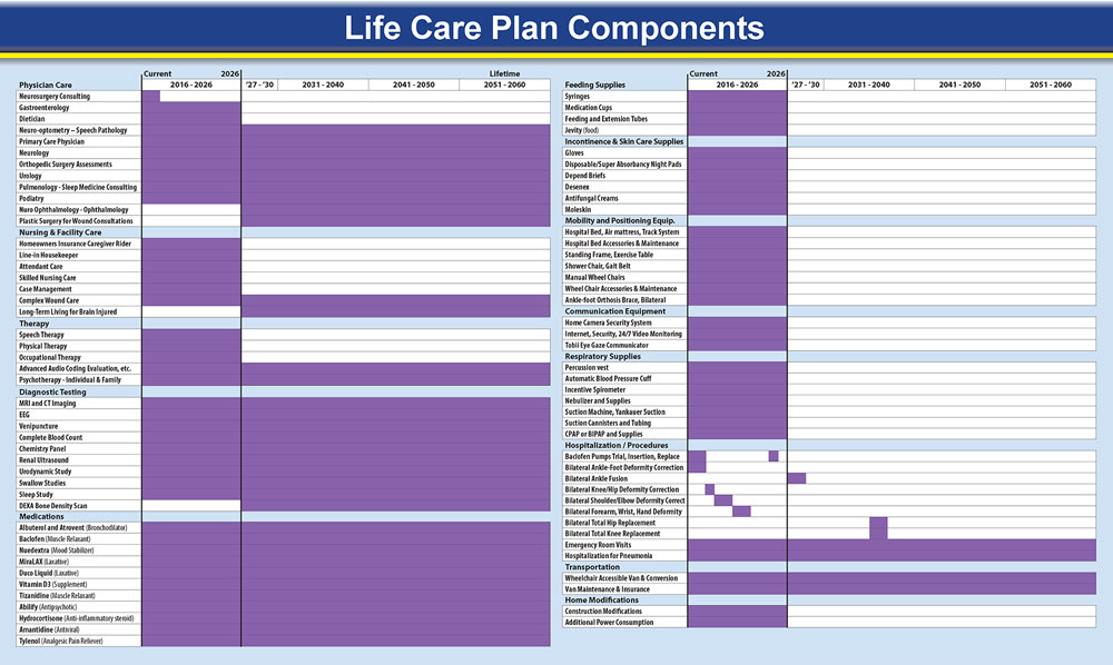 Timeline implementation of a lifecare plan comprising over seventy treatments spanning several decades.